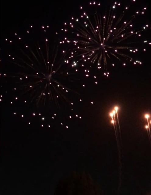 実家ちかくの東武動物公園の花火